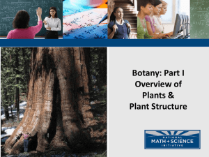 Botany: Part I Overview of Plants & Plant Structure