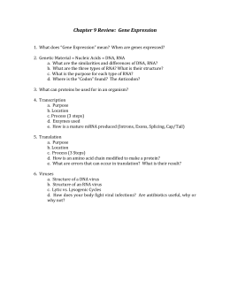 Section 12 3 Rna And Protein Synthesis Worksheet Answers : Section  Rna And Protein Synthesis With Chapter  Review Gene Expression From Studylib.net Photos
