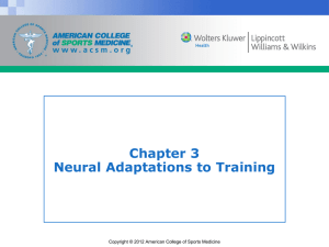 Chapter 3 Neural Adaptations to Training