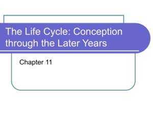 The Life Cycle: Conception through the Later Years Chapter 11