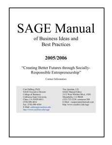SAGE Manual of Business Ideas and Best Practices 2005/2006