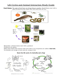 Life Cycles and Animal Interaction Study Guide