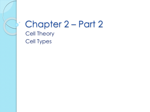 Chapter 2 – Part 2 Cell Theory Cell Types