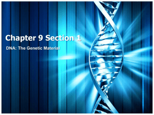 Chapter 9 Section 1 DNA: The Genetic Material