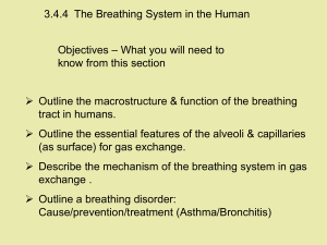 3.4.4  The Breathing System in the Human Objectives