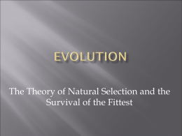 The Theory of Natural Selection and the Survival of the Fittest