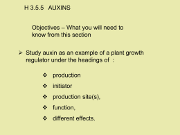H 3.5.5   AUXINS – What you will need to Objectives