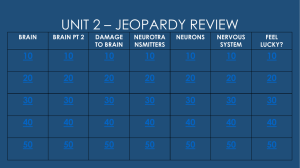 UNIT 2 – JEOPARDY REVIEW 10 20 30