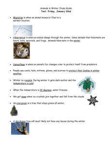Animals in Winter Study Guide  warmer location.