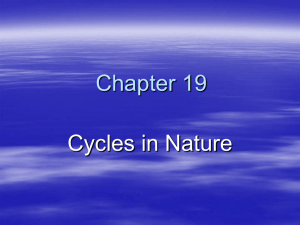 Chapter 19 Cycles in Nature