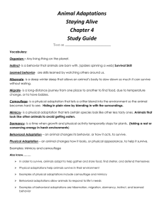 Animal Adaptations Staying Alive Chapter 4 Study Guide