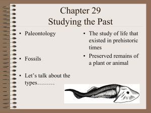 Chapter 29 Studying the Past