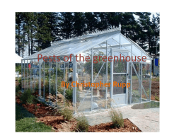 Pests of the greenhouse By Christopher Rupp