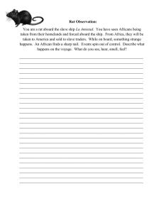 Middle passage essay