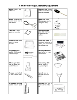 Worksheet Biology Laboratory Equipment worksheet lab equipment common biology laboratory equipment