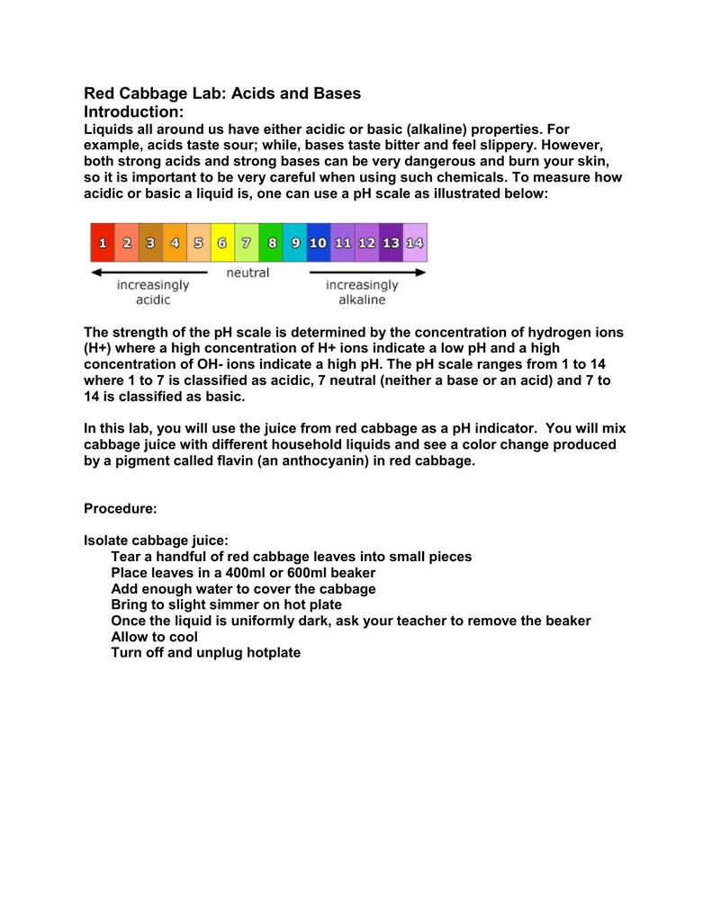 red cabbage juice ph indicator lab report
