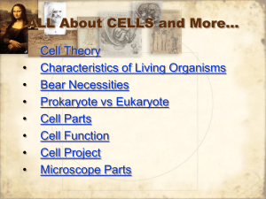 ALL About CELLS and More…