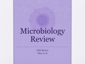 Microbiology Review EOG Review May 12-16