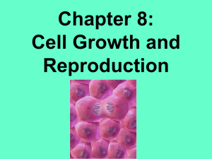 Chapter 8: Cell Growth and Reproduction