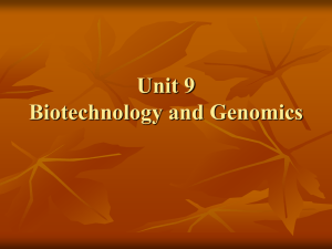 Unit 9 Biotechnology and Genomics