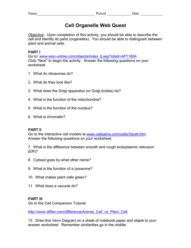 Worksheets Cell Organelles Worksheet Answers 017624760 1 ad36686916d775bdca47a48ded1a9f48 png
