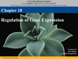 LECTURE PRESENTATIONS For CAMPBELL BIOLOGY, NINTH EDITION