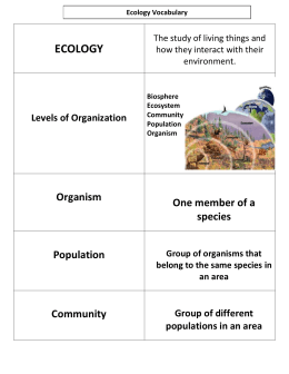 ECOLOGY  Organism One member of a
