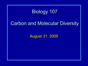 Biology 107 Carbon and Molecular Diversity August 31, 2005