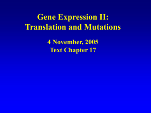 Gene Expression II: Translation and Mutations 4 November, 2005 Text Chapter 17