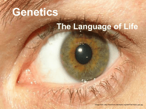Genetics The Language of Life Image from: