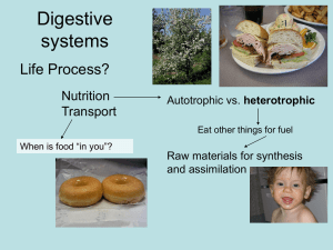 Digestive systems Life Process? Nutrition