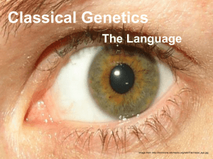 Classical Genetics The Language Image from:
