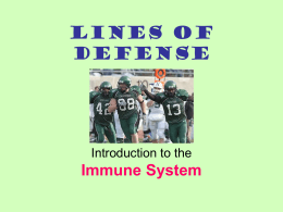 Lines of Defense Immune System Introduction to the