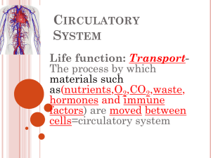 C S Life function: Transport