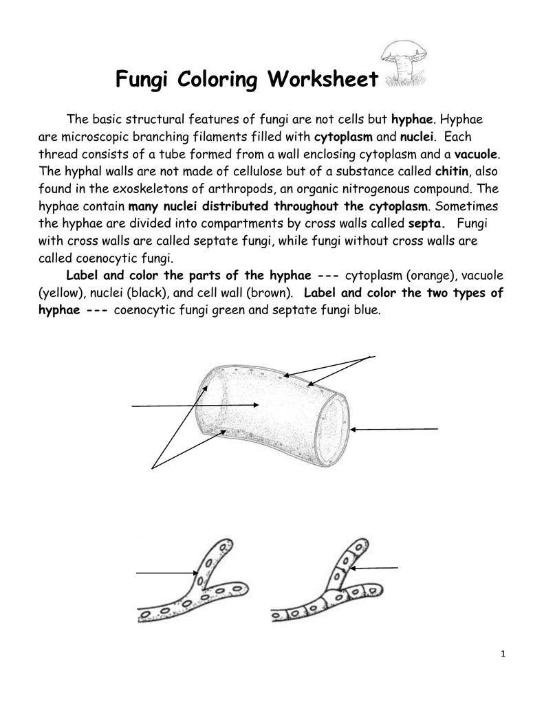 Fungi Coloring Worksheet kingdom fungi coloring worksheet with – Fungi Worksheet