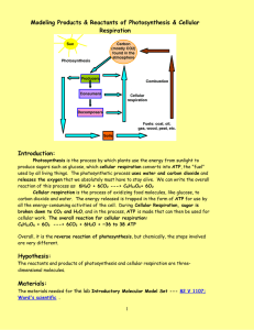 Modeling Products & Reactants of Photosynthesis & Cellular Respiration  Introduction: