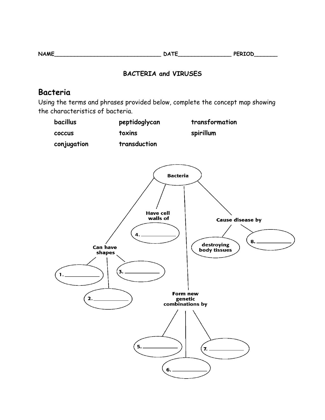 worksheet Bacteria And Viruses Worksheet 017722443 1 880f407616da1b31e0120526eb51ae5f png