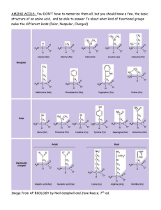 AMINO ACIDS- You DON'T have to memorize them all, but... structure of an amino acid,  and be able to...