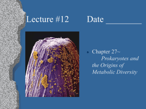 Lecture #12        Date... Chapter 27~ Prokaryotes and the Origins of