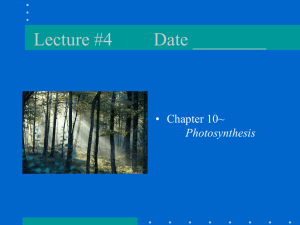Lecture #4 Date ________ • Chapter 10~ Photosynthesis