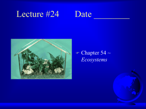 Lecture #24 Date ________ ~ Ecosystems