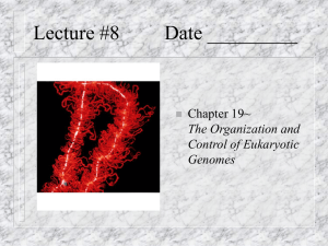 Lecture #8 Date _________ Chapter 19~ The Organization and