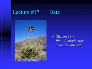 Lecture #17 Date _________ Chapter 38 ~ Plant Reproduction