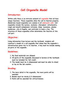 Cell Organelle Model  Introduction: