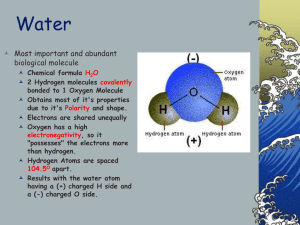 Water  Most important and abundant biological molecule
