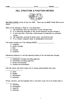 Printables Cell Structure And Function Worksheet structure and function worksheet davezan cell davezan