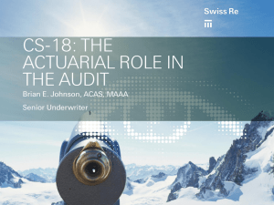 CS-18: THE ACTUARIAL ROLE IN THE AUDIT Brian E. Johnson, ACAS, MAAA