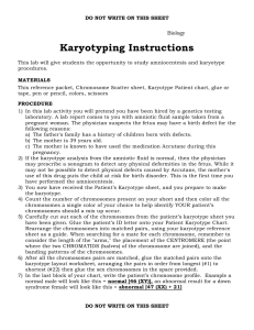 Karyotyping Instructions