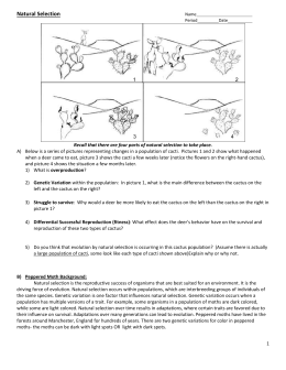 Student Exploration Natural Selection Answer Key Activity ...