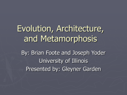 Evolution, Architecture, and Metamorphosis By: Brian Foote and Joseph Yoder University of Illinois